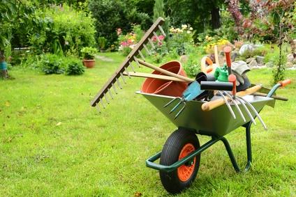 Gartenbauwissenschaften studieren
